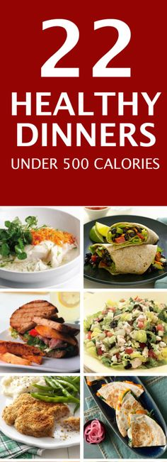 Healthy Meals for Two : 22 Dinner Recipes Under 500 Calories – Fit Vivo