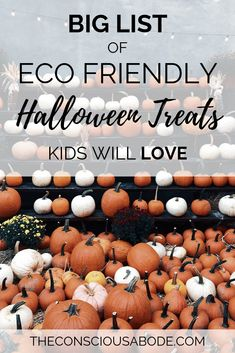 Eco Friendly Halloween Treats Kids will LOVE - Eco Friendly Halloween Treats Kids LOVE Having a low waste, sustainable Halloween doesn't have t - Food Halloween Costumes, Halloween Treats For Kids, Throw And Grow, Eco Kids, Mint Tins, Food Allergies, Eco Friendly, The Best, Zero Waste