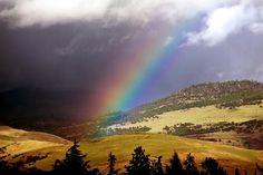 Jamie Lusch Photography  Nature  - luschphotography