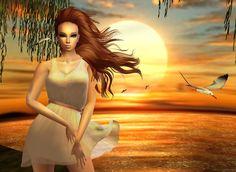 """""""A Glorious Sunset"""""""