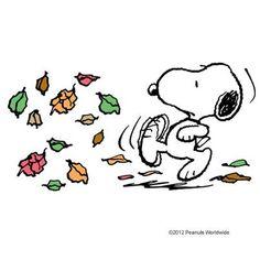 Leaves!!