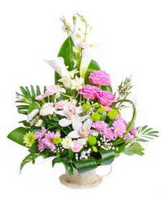 Send Occasional Flowers Online