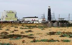 Flood risk to nuclear reactors raises meltdown fears - The Ecologist
