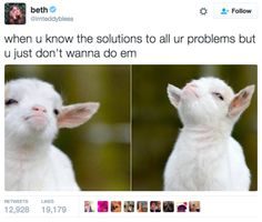 Ignoring the solution to your problems: | 18 Hilarious And Painfully Relatable Tweets About Being A Human Disaster