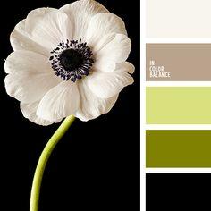 Цветовая палитра №2407