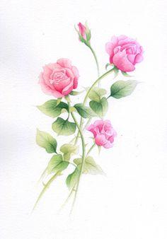 ◆ギャラリー2(植物画) - 奥田みきのメルヘンイラスト
