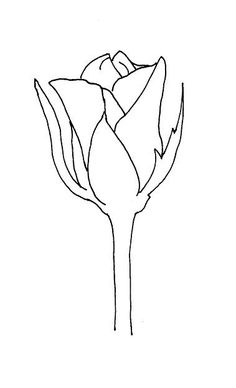 252 Best Drawing Roses images Rose drawings Drawing
