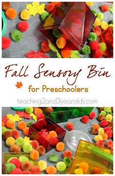 Fall sensory bin with tongs and pom poms to help build fine motor skills, by teaching 2 and 3 year olds.