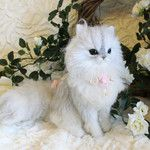 Persian felted cat  from Gallery Cat - moana-lani Jimdo page