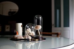 A collection of sea urchins, coral, ceramic mushroom and magnifying glass are set on a mirror
