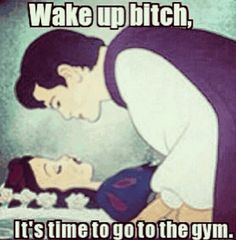 This is all I need! Haha
