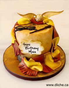 Gâteau Harry Potter pour un anniversaire! Harry Potter cake for a birthday!