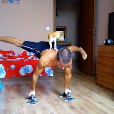 Радостин Колев from Bulgaria with a doggie assisted planche #barstarzz #planche #dog #doggie #streetworkout #calisthenics #homeworkout