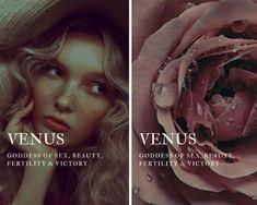 """roman mythology → venus """"venus is the goddess of sex, beauty, fertility & victory """" Greek Gods And Goddesses, Greek And Roman Mythology, Greek Goddess Mythology, Venus Mythology, Aphrodite Goddess, Goddess Names And Meanings, Names With Meaning, Pretty Names, Cute Names"""