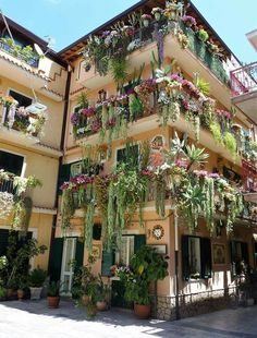 Urban Garden Design - Bohemian style lovers are mostly artistic type of peoples who loves entertainment, exploring and living an unconventional lives. Bohemian style home decor means the … Balcony Garden, Indoor Garden, Indoor Plants, Garden Plants, Decoration Plante, Gardening Zones, Vertical Gardens, Cacti And Succulents, Beautiful Gardens