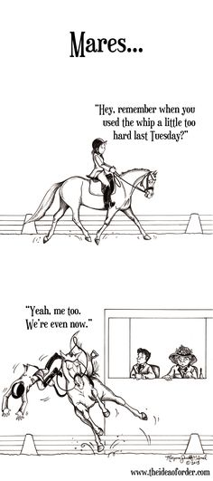 On Horse Nation >> The Idea of Order: Mares. Always Keeping Score. The post On Horse Nation >> The Idea of Order: Mares. Always Keeping Score. appeared first on Gag Dad. Funny Horse Memes, Funny Horses, Cute Horses, Beautiful Horses, Funny Horse Pictures, Horse Humor, Animal Pictures, Beautiful Cats, My Horse
