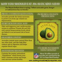 "are the Health Benefits of Avocados? ""Where avocados grow, hunger or malnutrition has no friends"". Why to eat an avocado a day!""Where avocados grow, hunger or malnutrition has no friends"". Why to eat an avocado a day! Superfoods, Yoga Inspiration, Fitness Inspiration, Natural Cures, Natural Health, Natural News, Natural Foods, Natural Skin, Avocado Health Benefits"