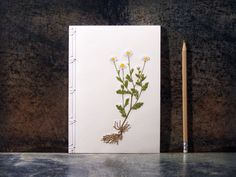 Chamomile. Botanical Notebook. Daisy. Embroidered Journal.