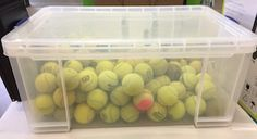 Fundraiser - How many tennis balls are in the box?