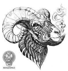Sick illustrations  by BioWorkZ ! Epic Tattoo, S Tattoo, Tattoo Drawings, Black Sheep Tattoo, Black Tattoos, Cool Tattoos, Sheep Illustration, Sheep Drawing, Grey Artist