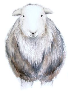 Limited edition print Molly the Herdwick sheep sheep print