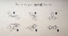 Hot to tie a bow tie Self tie bow tie instructions