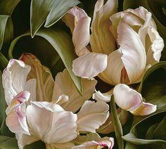 Mia Tarney - Paintings