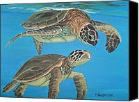Love this painted sea turtle canvas for the new family room.