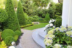 Ogród nie tylko bukszpanowy - część I - Forum ogrodnicze - Ogrodowisko Boxwood Garden, Topiary Garden, Garden Pool, Front Gardens, Formal Gardens, Outdoor Gardens, Landscape Design, Garden Design, Classic Garden