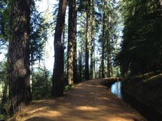 Nevada City hiking: Cascade Canal Trail