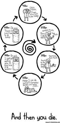 funny-life-cycle-studying-college