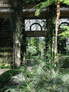Dream greenhouse #conservatory #greenhouse Longwood Gardens, PA, USA