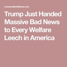 Trump Just Handed Massive Bad News to Every Welfare Leech in America