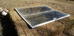 Windows and hay bales make a Quick, Easy and Cheap Cold Frame. - GRIT Magazine