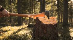 Making firewood. The old way. By John Neeman Tools