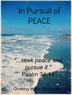 How to Pursue Peace this Christmas: 10 Ideas - Growing in His Glory