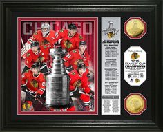 "Chicago Blackhawks 2015 Stanley Cup ""Banner"" Photo Mint!"