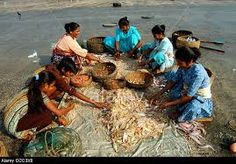 Image result for fisherwomen pictures