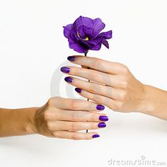 Manicured Hands Holding Flower