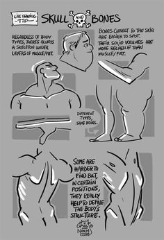 grizandnorm: Tuesday Tips - SKULL and BONESEven when drawing the nude figure, it can be difficult to find angles and structure in the body. The skeleton, even when buried under muscle and fat, can be something to rely on because its structural shape doesn't really bend, inflate or sag like muscles, fat or hair (or clothes). Try to spot and define those bones to define the body more accurately. For example, finding and utulizing the angles of the clavicles really does help to define the…