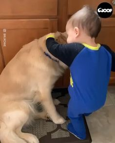 Sometimes you just need a friend to snuggle with ❤️ - Cutest Baby Animals Cute Funny Babies, Cute Funny Animals, Cute Baby Animals, Animals And Pets, Cute Baby Videos, Cute Animal Videos, Funny Animal Videos, Chien Goldendoodle, Chien Golden Retriever