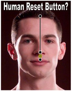 Sometimes don't you wish we came with a RESET button like a video game? We DO! Did you know that this point between your upper lip and your nose (GV 26) will help to relieve UNCONSCIOUSNESS? Find treatment in London? | Zak Acupuncture Clinic 07967525168