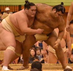 高安、大関とりへ順調 秋巡業で照ノ富士圧倒「成長できるチャンス」 #相撲