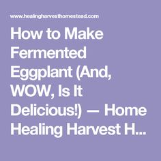 How to Make Fermented Eggplant (And, WOW, Is It Delicious!)  — Home Healing Harvest Homestead