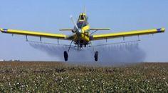 المبيدات الاسرائيلية تقتل محاصيل 12 ألف دونم في قطاع غزة