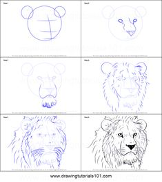 How to Draw Lion Head step by step printable drawing sheet to print. Learn How to Draw Lion Head Lion Drawing Simple, Lion Head Drawing, Pencil Art Drawings, Easy Drawings, Drawing Sketches, Sketching, Animal Sketches, Animal Drawings, Disney Drawing Tutorial