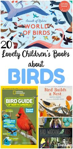 Share some of these lovely children's books about birds with your kids this spring or fall! These are wonderful for learning more about how these incredible creatures live! Parenting Books, Kids And Parenting, Peaceful Parenting, Gentle Parenting, Parenting Advice, Read Aloud Books, Good Books, Best Children Books, Childrens Books