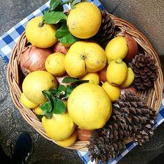 Túró guru torta - csakapuffin.hu Eggs, Breakfast, Food, Morning Coffee, Essen, Egg, Meals, Yemek, Egg As Food