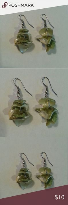 Genuine Shell Earrings Adorable green shell earrings - great for sunmer! Jewelry Earrings