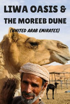 The largest date plantation in the Arab Gulf, a vast sea of dunes and the local Bedouins make Liwa Oasis and the Moreeb dune the best place in Dubai and the United Arab Emirates (UAE)